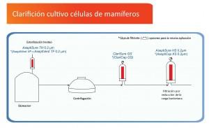 Mammalian Cell Culture Clarification