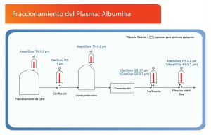 Plasma Fractionation Albumin