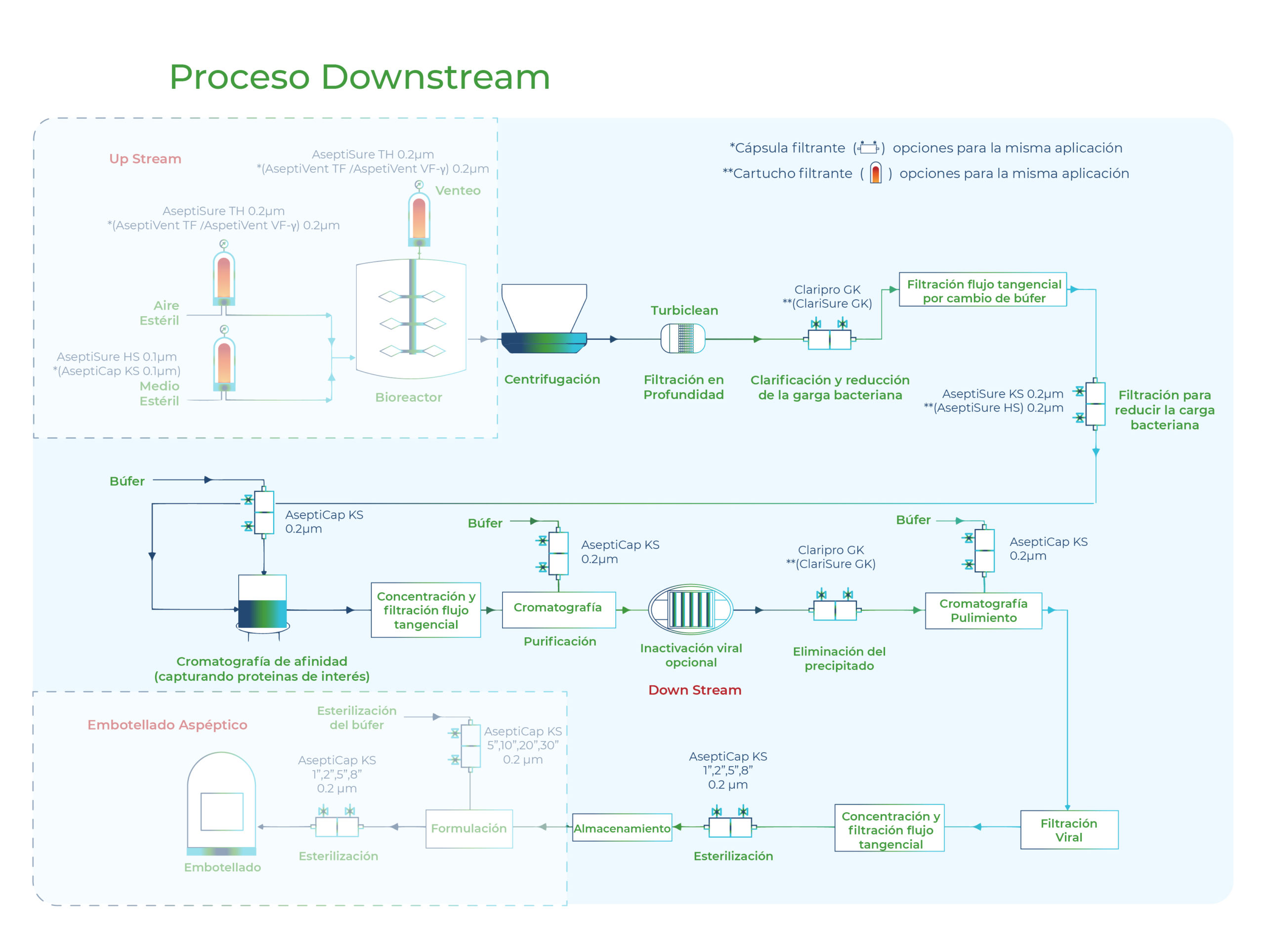 Diagrama Proceso Downstream. Gesfilter