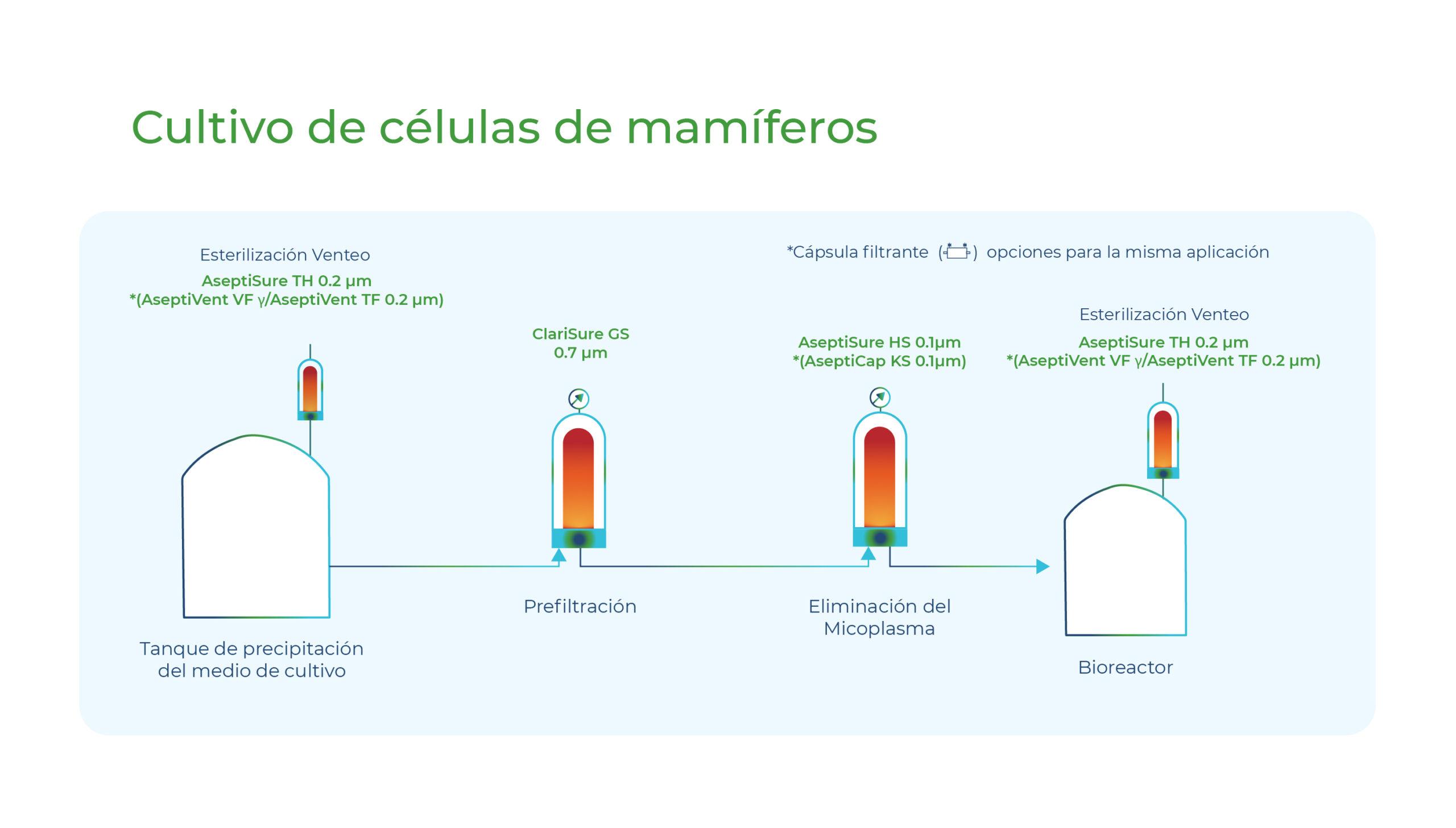 Diagrama Cultivo de células de mamíferos. Gesfilter