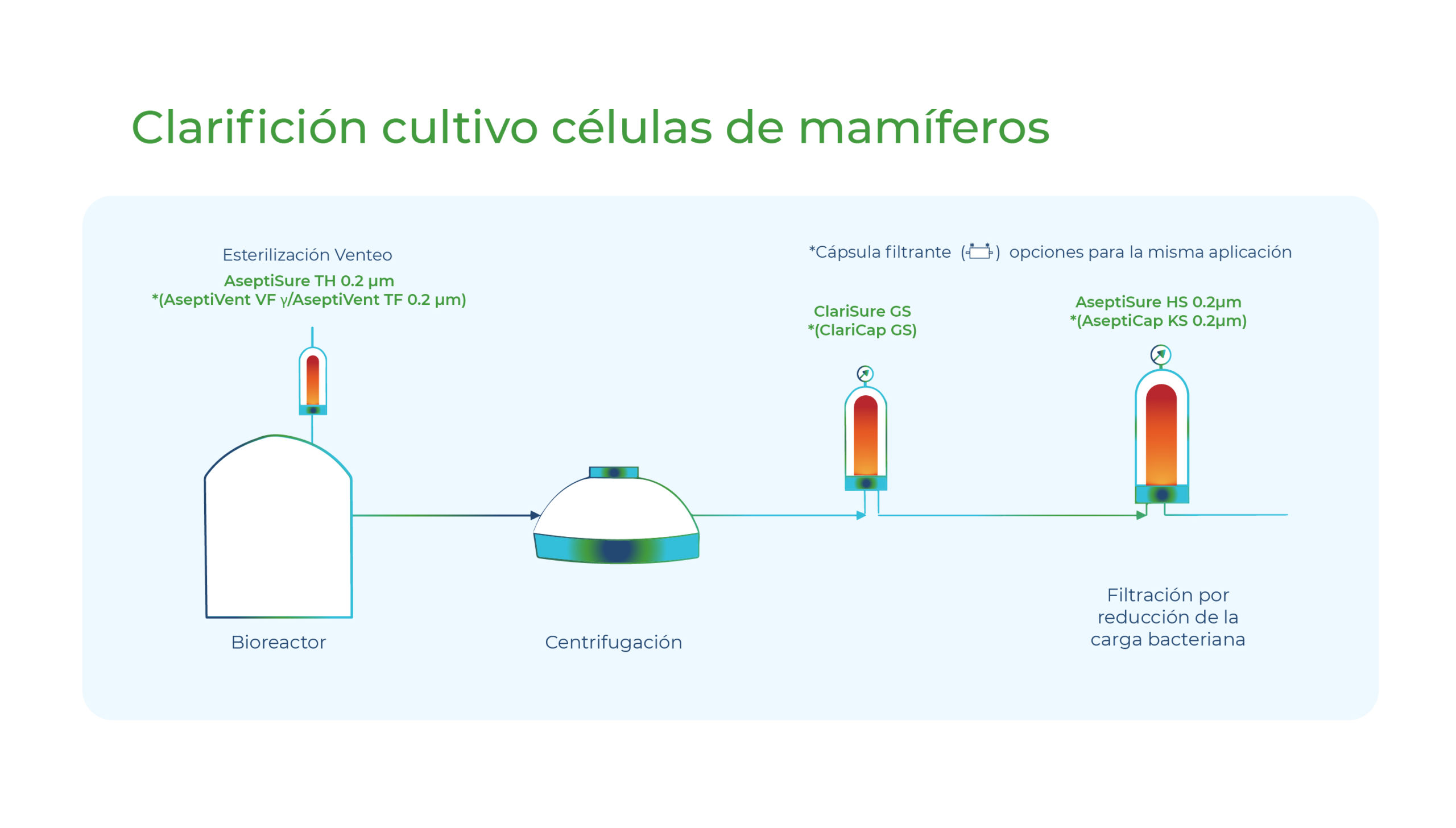 Diagrama Clarificación cultivo células de mamíferos. Gesfilter